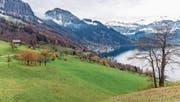 Umstritten: Das Gebiet Teufibalm oberhalb von Vitznau soll umgezont werden. (Bild: Roger Grütter (Vitznau, 20. November 2017))