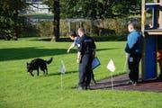 Lennox ist an der Polizeihundeprüfung als Sieger hervorgegangen. (Bild: Zuger Polizei)