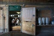 Beim Milchverarbeiter Hochdorf ging deutlich weniger Milch ein. (Bild: Keystone)