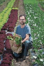 Biobauer Sebastian Ineichen in einem seiner Gemüsebeete. (Bild: Pius Amrein (Kastanienbaum, 16. Mai 2017))