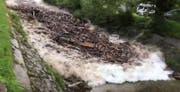Hier kommt eine geballte Ladung Schwemmholtz die Laui hinunter. (Bild: Screenshot Youtube)