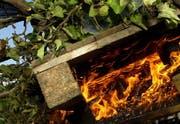 Das Verbrennen von Grünabfällen im Freien setzt viele Schadstoffe frei. (Symbolbild Martin Heimann/Neue ZZ)