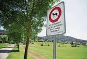 Diese Verbotstafel beim Sportplatz Risch sorgt für Ärger bei Hundehaltern. (Bild: Corinne Glanzmann (Ebikon 4.Juli 2016))