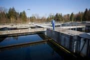 Die Kläranlage Buholz in Emmen reinigt das Abwasser von 180 000 Einwohnern. Klärwerkfachmann Theo Stadelmann steht vor einem Nachklärbecken. Hinten, Richtung Wald, ist eine Erweiterung geplant. (Bild: Manuela Jans / Neue LZ)