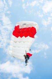 Fallschirmspringer (Symbolbild) (Bild: Izedin Arnautovic)