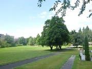 Blick auf den Friedhof Staffeln im Luzerner Stadtteil Littau. (Bild: PD)