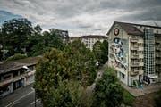 Sie ist Teil des Kulturprojekts Himmelrich in der Tödistrasse in Luzern: Die «Queen-Kong» ziert eine der Fassaden. (Bild: Pius Amrein / Neue LZ)