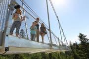 Sattel soll für Familien mit Kindern noch attraktiver werden. Auf dem Bild: die Hängebrücke. (Bild: Archiv)