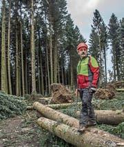 Betriebsförster Hans-Rudolf Hochuli hat mit diesem Holz viel vor. (Bild: Nadia Schärli (Geiss, 3. Februar 2018))