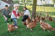 Ihre Hühner kann man leasen: Stephan und Andrea Stocker mit Tochter Alina. (Bild: Boris Bürgisser (Greppen, 12. April 2017))