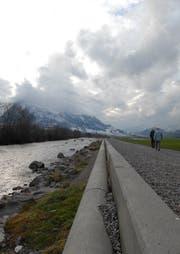 Die Engelberger Aa bei Buochs - entlang dieses Weges riss der Hund zwei Schafe. (Bild: Geri Wyss / Neue LZ)
