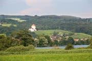 Der Baldeggersee mit Blick auf Gelfingen und das Schloss Heidegg (Symbolbild). (Bild: Manuela Jans / Neue LZ)