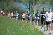 Rund 800 Laufbegeisterte absolvierten gestern Nachmittag den Hauptlauf (10 km) um den Rotsee. (Bild: Corinne Glanzmann (Ebikon, 8. April 2017))