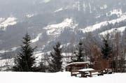 Im Gebiet Gibel soll ein neuer hölzerner Aussichtsturm gebaut werden. (Archivbild Laura Vercellone/Neue SZ)