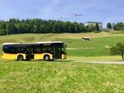 Ab dem 1. Juli fährt das Postauto 20 Mal täglich auf den Bürgenstock. (Bild: pd)