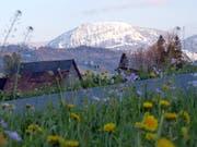 Frühling vorne, Winter hinten auf dem Schimbrig! (Bild: Leserbild: Josef Lustenberger)