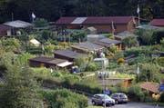 Blick auf Luzerner Familiengärten. Hier jene auf dem Areal Sedel-West. (Bild: Philipp Schmidli / Neue LZ)