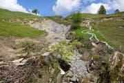 Rutschungen im Hintergraben in Sarnen: Das Bild stammt vom Juni 2013. (Bild PD)