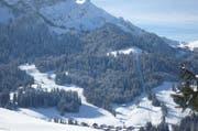 Der Skilift war 1945 der erste Bügellift des Kantons Luzern. (Bild zvg)