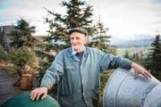 Er verkauft Christbäume und feiert am «Christkindlitag» Geburtstag: Franz Zemp (80) in seiner Baumkultur in Eschenbach. (Bild Roger Grütter)