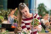 Bindet Blumen zu Sträusschen: Silvana Burri aus Kriens. (Bild: Eveline Beerkicher / Neue LZ)
