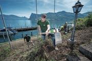 Gärtner Philipp Vogel (vorne) mit einem Mitarbeiter beim Vorbereiten des Terrains für den Rebberg. (Bild: Pius Amrein (Kastanienbaum, 16. Mai 2017))