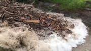 Hier kommt die Laui – mit geballter Ladung Schwemmholz. (Bild: Screenshot Youtube)