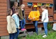 Umschwirrt im Lehrbienenstand: Bieneninspektor Sepp Windlin zeigt den Mädchen ein ebenso fleissiges wie faszinierendes einheimisches Tierchen. (Bilder Romano Cuonz)