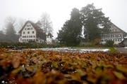 Ein grosszügiger Grüngürtel soll rund um den Zurlaubenhof erhalten bleiben. (Bild Stefan Kaiser)