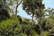 Reiheneinfamilienhäuser an der Aberenterrasse in Baar. (Bild: Neue ZZ)