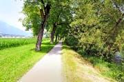 Der Weg an der Sarneraa zwischen Sarnen und Kägiswil. Hier soll der Fluss linksseitig aufgeweitet werden – dabei geht Kulturland verloren. (Bild Adrian Venetz)