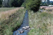 Der Bach Bünz führt viel weniger Wasser, als in dieser Jahreszeit eigentlich normal wäre. (Bild: Stefan Kaiser (Muri, 17. Juli 2017))