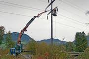Spezialisten entfernen die Isolatoren an den Strommasten. (Bild: Primus Camenzind / OZ)