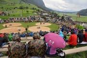Allweg-Schwinget 2015: Kurz vor der Mittagspause hält der Regen Einzug. (Bild: Robert Hess / Neue OZ)