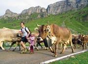 Mit viel Freude sind die Älplerfamilien mit ihren Kühen wieder zurück auf den Urnerboden gekommen. (Bild: Franz Imholz (26. August 2017))