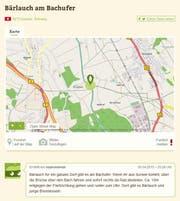 So findet man etwa in Knutwil am Bachufer Bärlauch. (Bild: Screenshot mundraub.org)