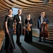 Carmina-Quartett. (Bild: Lukas Beck / PD)