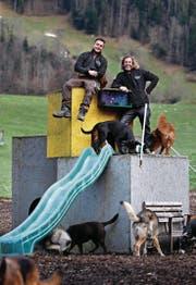 Nici Achermann (links) hat vor rund einem Jahr bei Adrian Blättler zu arbeiten begonnen. Heute ist er fest angestellt in der Hundepension. (Bild: Stefan Kaiser (Morgarten, 8. Januar 2018))