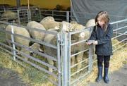 Fabiana zeigt den Schafen die Ergebnisse des Fotoshootings. (Bild: Paul Küchler (Sachseln, 17. März 2018))
