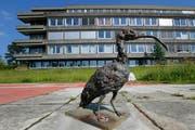 Neben anderen Kunst- und Kulturprojekten steht auch «Shorty» aktuell auf dem ehemaligen Zuger Kantonsspitalareal. (Bild Stefan Kaiser)