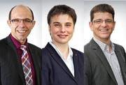 Mögliche Nachfolger für Finanzdirektor Hans Wallimann: Christoph Amstad, Lucia Omlin und Markus Ettlin (von links). (Bild: PD)
