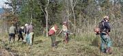 Die Obwaldner Jäger engagieren sich unentgeltlich im Naturschutzgebiet. (Bild: Heinz Wolf/PD)