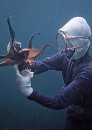 Eine Ama-San in Aktion in den Tiefen des Meeres. (Bild: PD/Vinca Film)