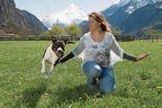 Ein «Hopp!» genügt, und Hündin Lilou springt Frauchen Sandra Schneider über die Arme. (Bild: Nadia Schärli (Schattdorf, 21. April 2017))