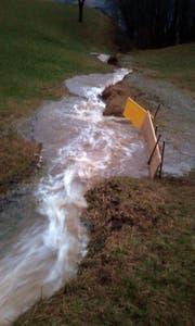 Das Wasser bahnt sich einen Weg hinunter zum Lauerzersee. (Bild: Feuerwehr Lauerz)