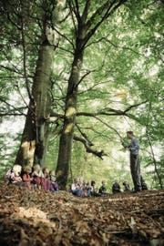 Indem sie die Natur erkunden, lernen Kinder ganz wichtige Dinge. Und zwar aus sich heraus. (Bild: David Trood/Getty)