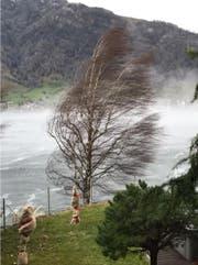 Der Sturm peitscht bei Arth über den Zugersee. (Bild: Leserbild Patrik Schär)