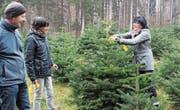 In aller Ruhe streift die Kundschaft durch die Christbaumkulturen und trifft ihre Wahl. (Bild: Cornelia Bisch (6. Dezember 2017))