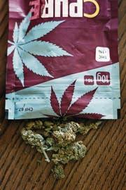 THC-armes Cannabis steht derzeit hoch im Kurs. (Bild: Christian Beutler/Keystone)