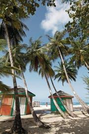 Die Koralleninsel Barbados bietet mehr als 80 makellose weisse Sandstrände. (Bild: Anna Karolina Stock)